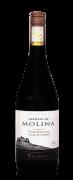 Castillo de Molina Reserva Pinot Noir