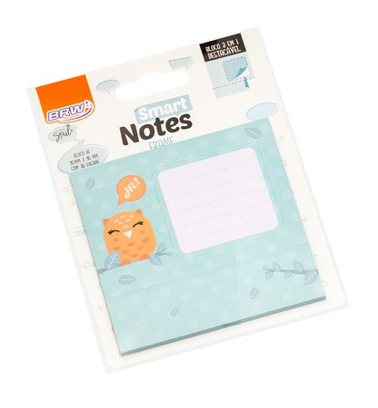 BLOCO SMART NOTES FRAME CORUJA C/ 30 FLS - BRW