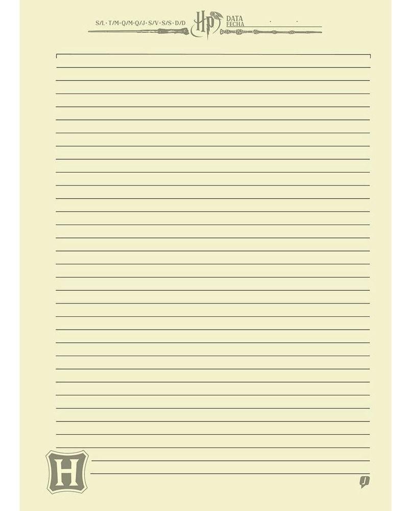 Caderno Universitário HARRY POTTER 1 Matéria - Jandaia