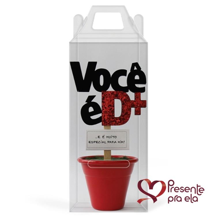 Kit Mini Vaso Decorativo e Colares com Pérolas