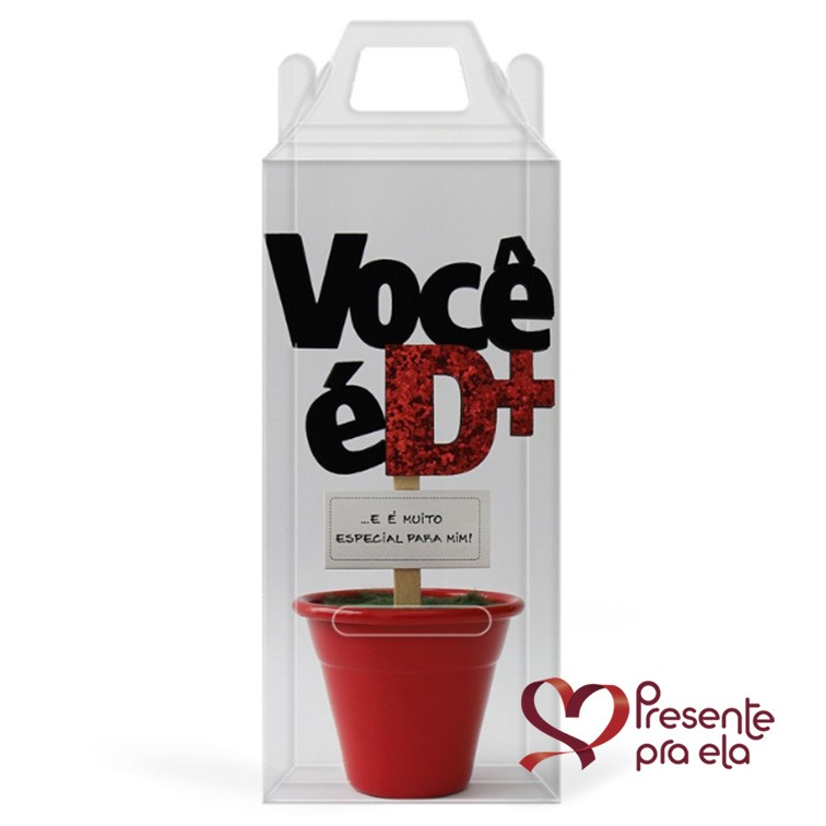 Kit Sacola Cachorro e Mini Vaso Decorativo