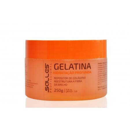 Gelatina Capilar Salles Profissional 250gr