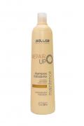 Shampoo Repair Up Salles Profissional 1lt