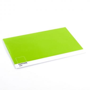 Jg Americano Pantone Verde Neon 50 folhas