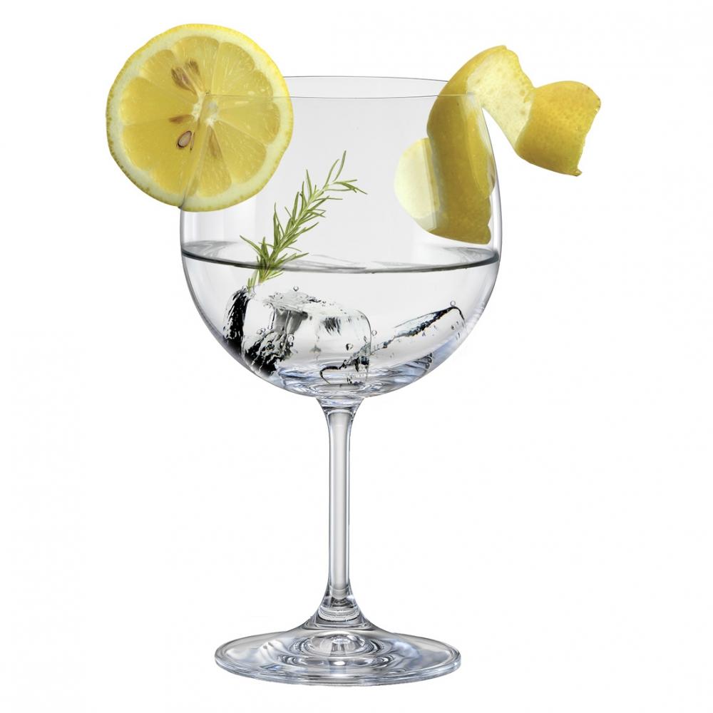 Jg 06 Taças de Gin Anna Cristal 600ml