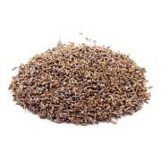 Alfazema Extra Importada (Lavandula officinalis) - 30g