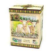 Chá Orgânico Capim-limão Melissa Maracujá 15 sachês.