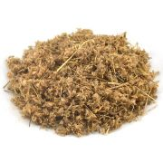 Sete Sangrias (Heliotopium indicum) 25 gramas - Paiol