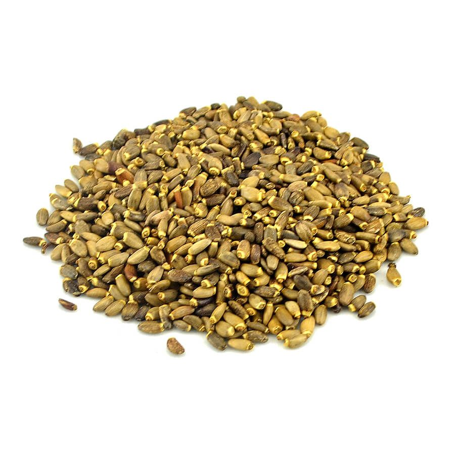 Cardo Mariano (Silybum marianum) 30 gramas