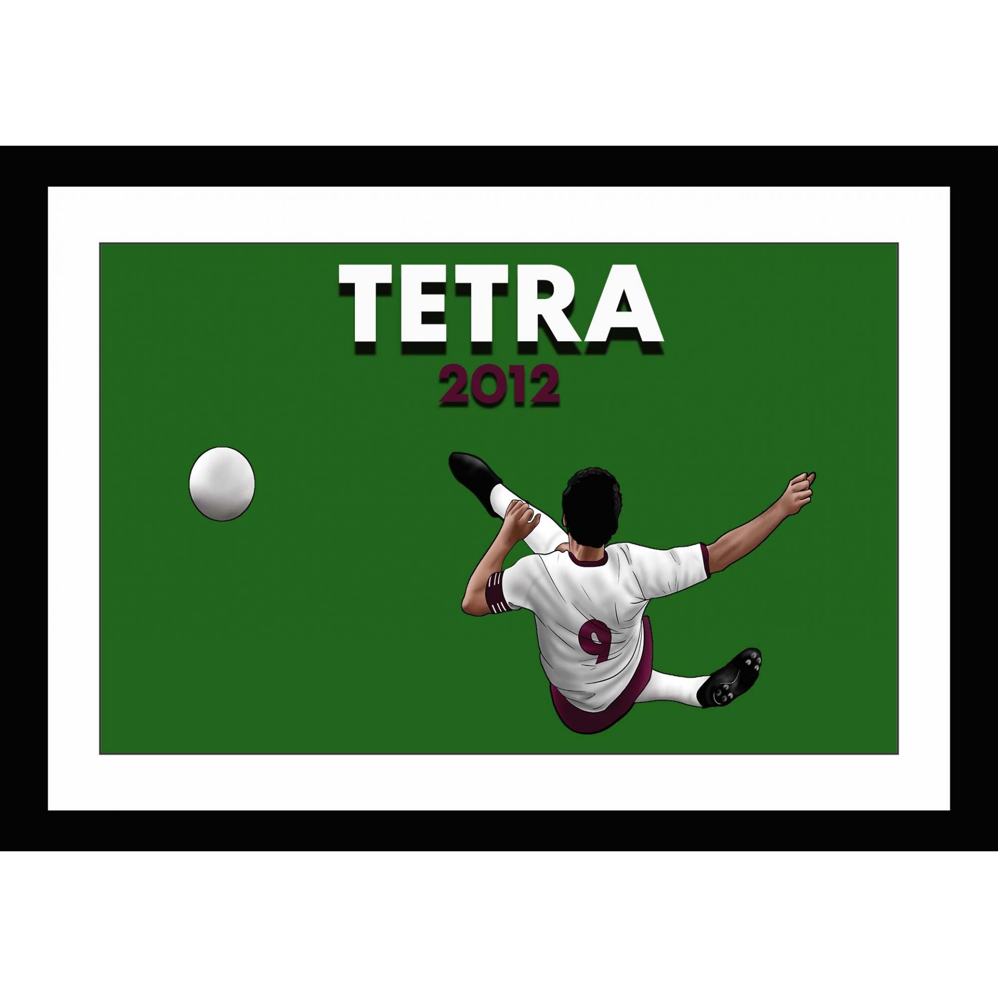 Quadro Voleio pro Tetra