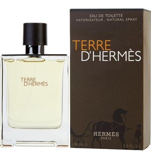Perfume Terre D'Hermés Eau De Toilette Masculino  100 ml