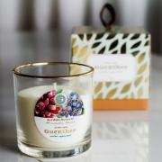 Vela Perfumada Copo Aroma Jardim Secreto 150g
