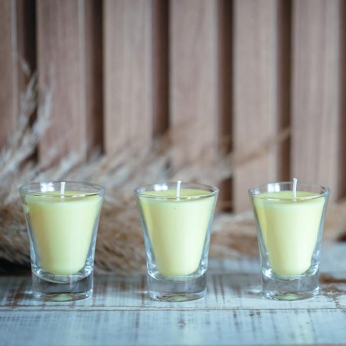 Vela Perfumada Vidro Aroma Citronela 45g