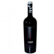 Vinho Tinto Cabernet Sauvignon Cata Terroirs