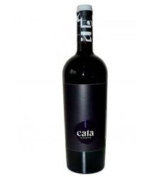 Vinho Tinto Malbec Cata Terroirs