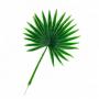 Folhagem Palmeira - 58cm