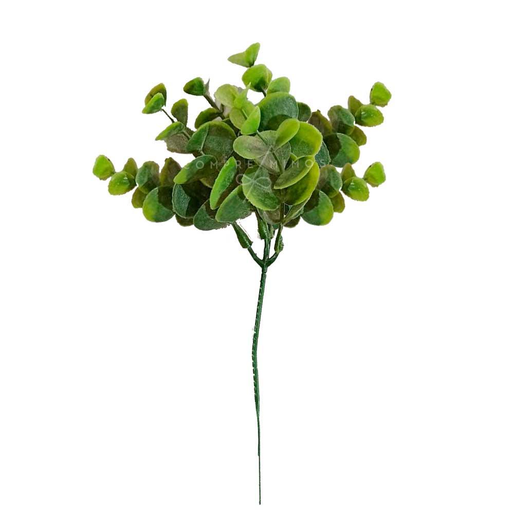 Mini Eucalipto Verde - Galho - UN