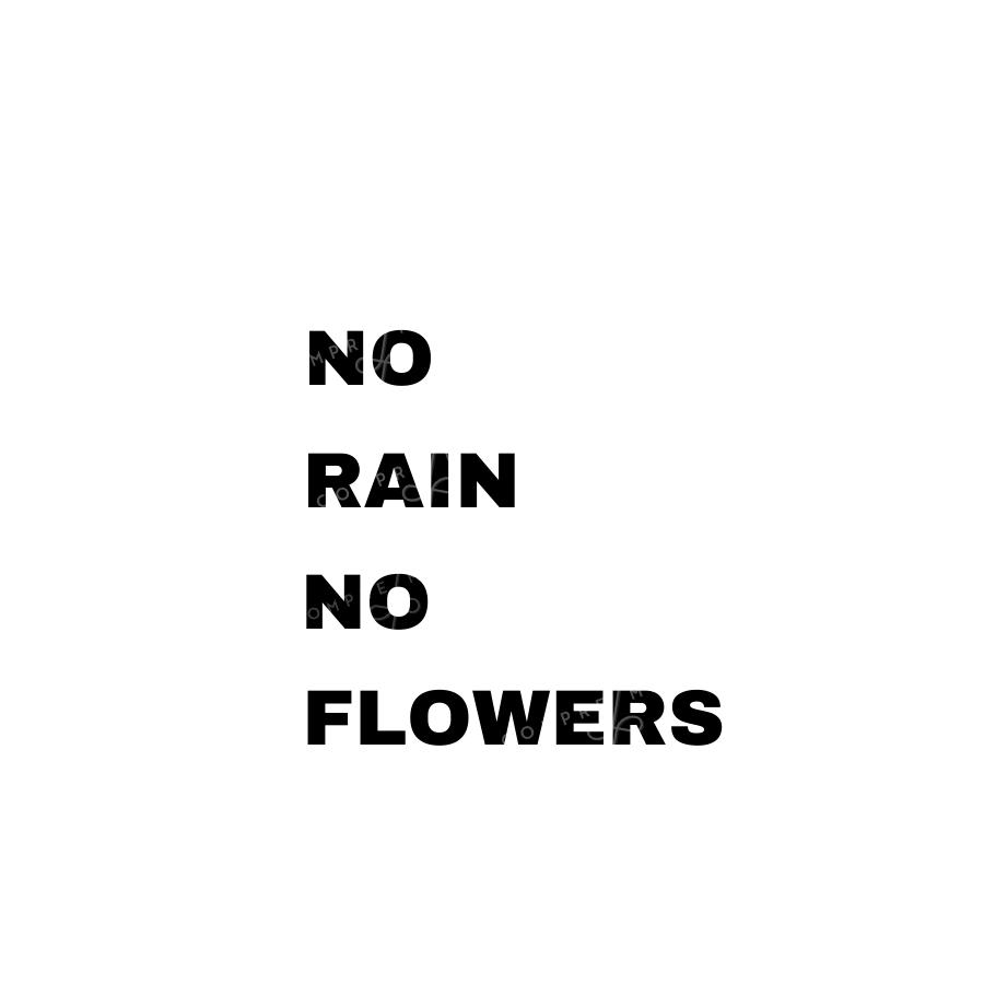 Quadro  No Rain No Flowers