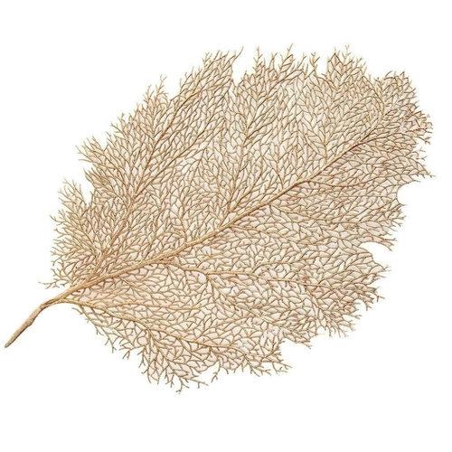 Jogo Americano 57cm Leaf Dourada