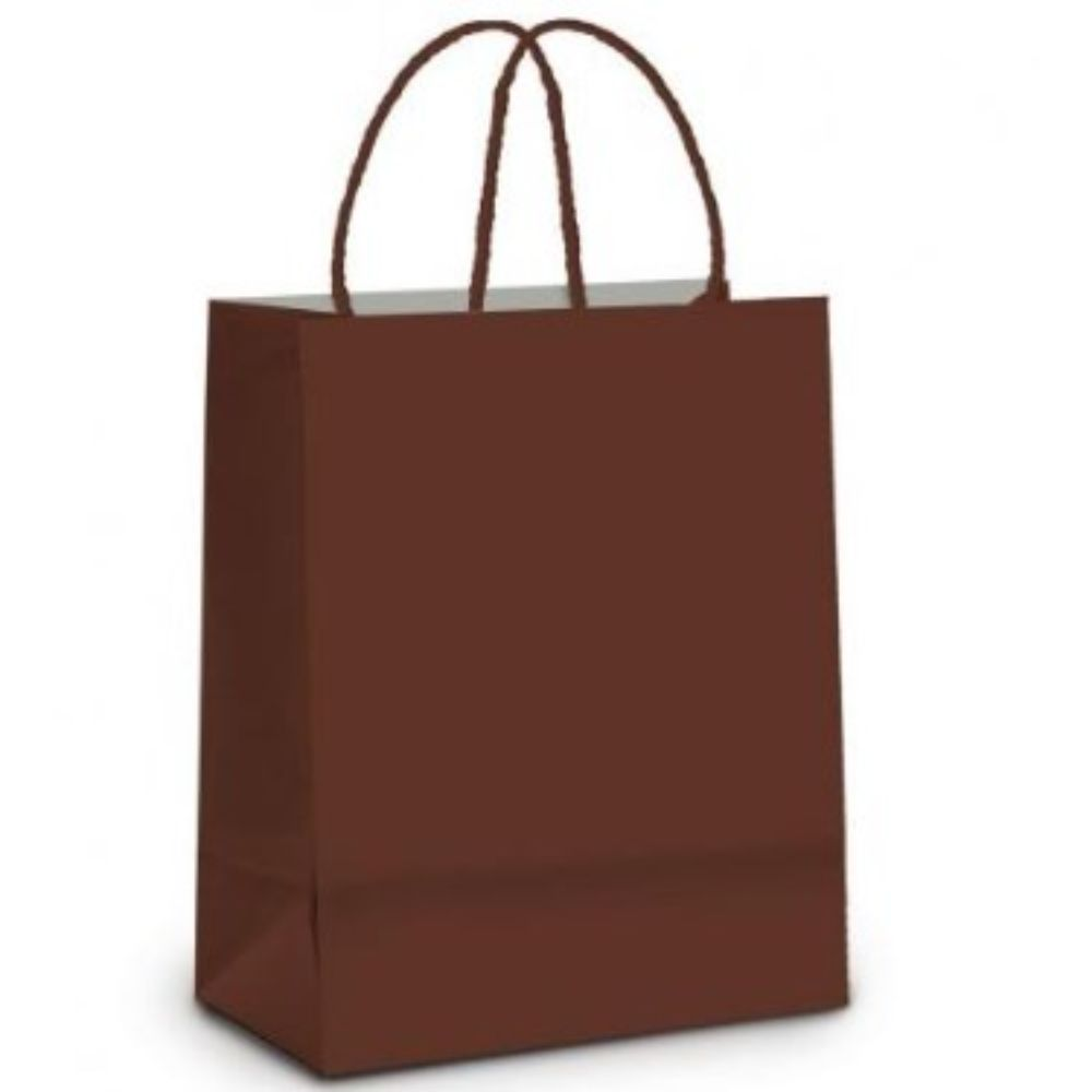 Sacola Papel Lisa 26x19,5x9,5cm Marrom