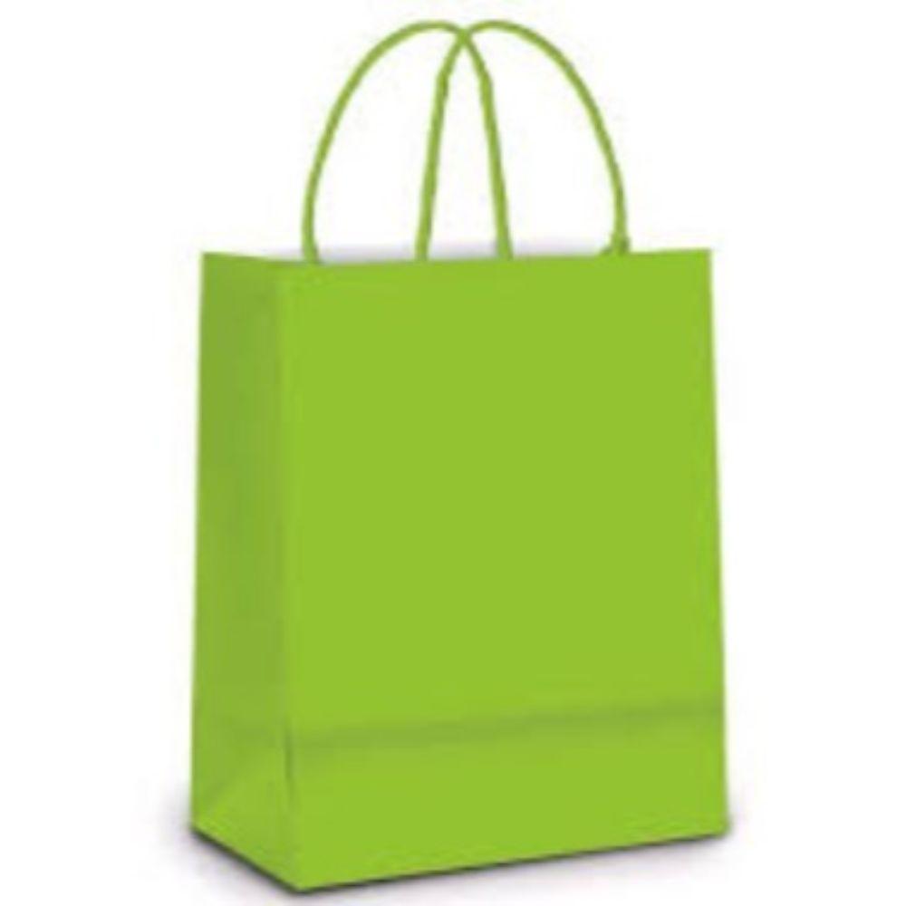 Sacola Papel Lisa 26x19,5x9,5cm Verde