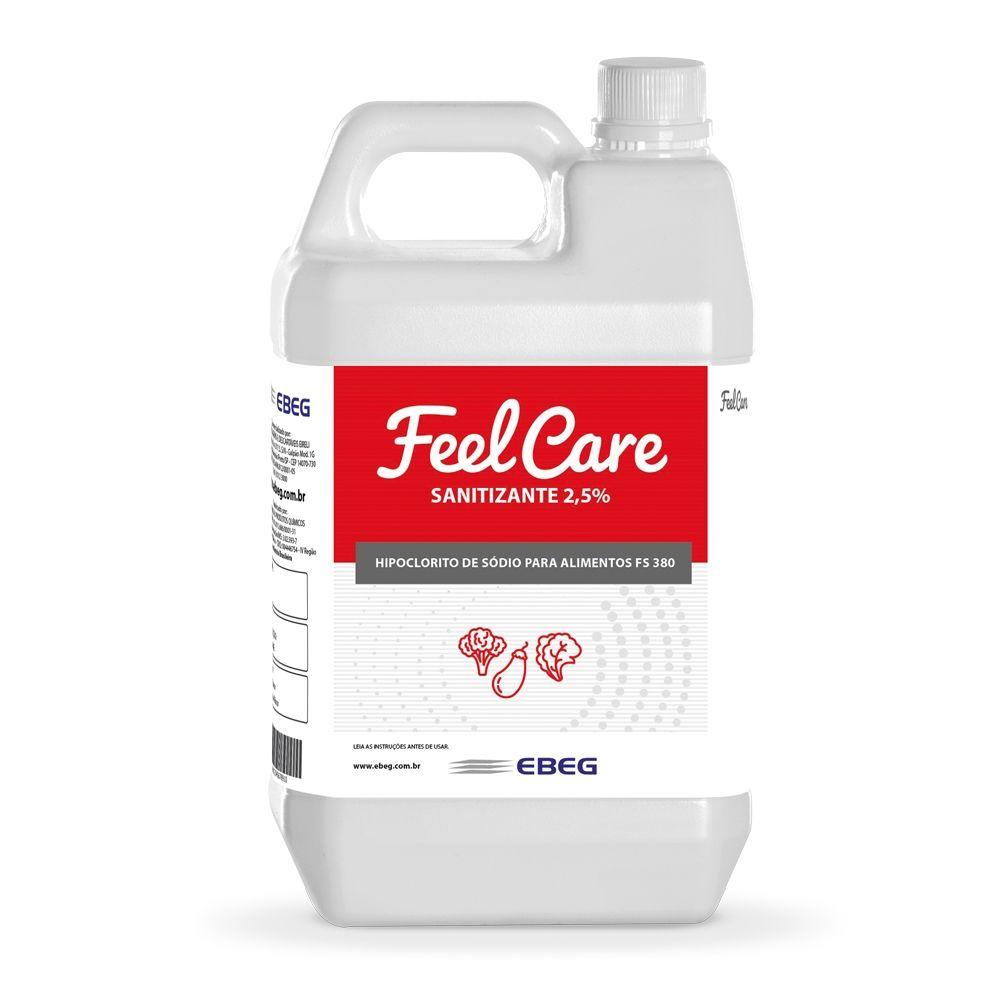 Sanitizante 2,5%Feelcare Fs 380 5lt
