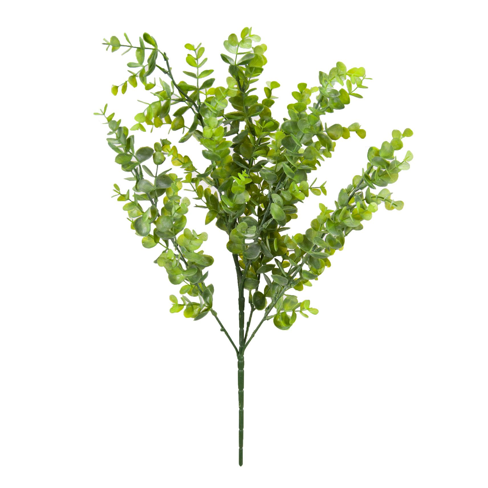 Buquê Eucalipto c/ 06 hastes 60 cm