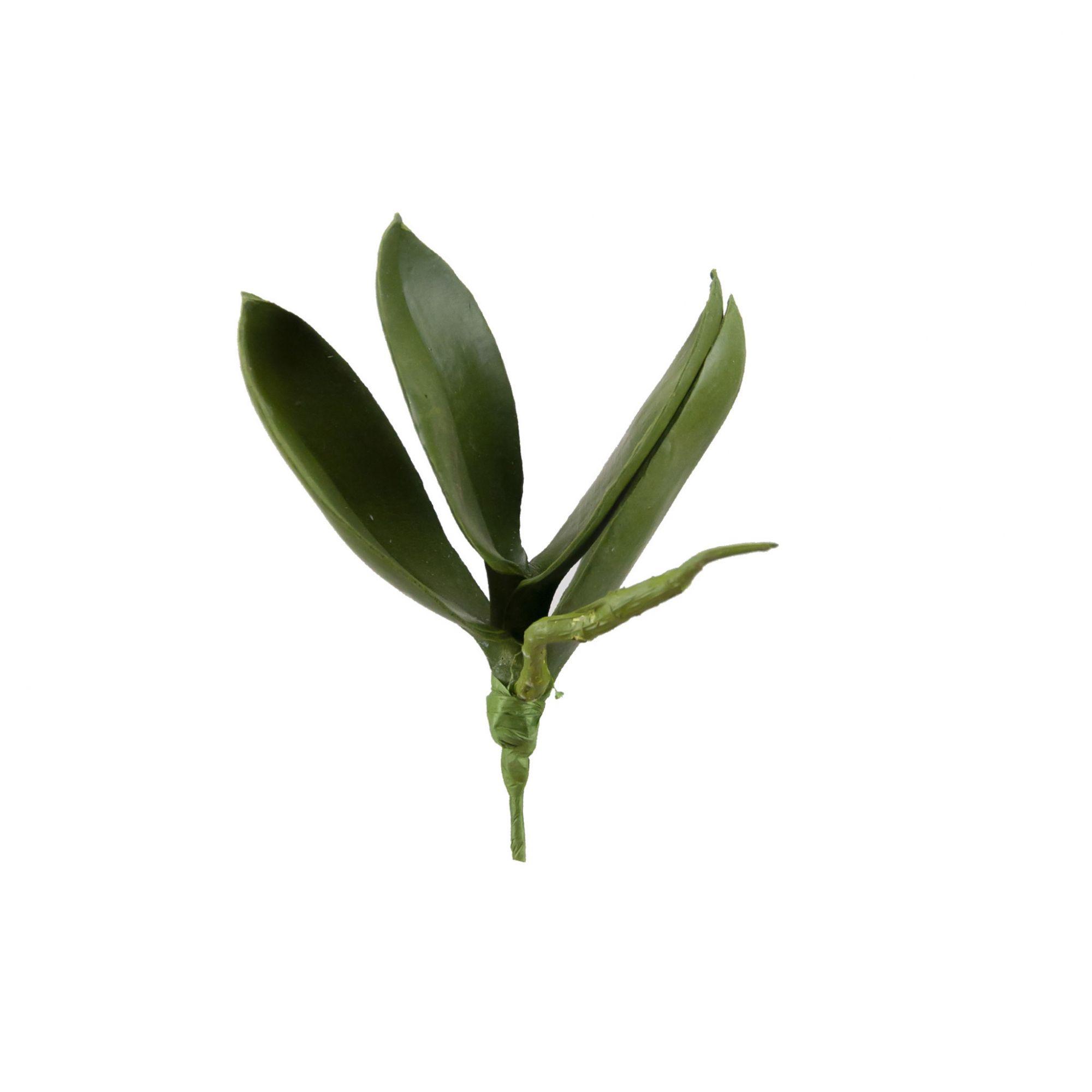Folha de Orquídea 15 cm