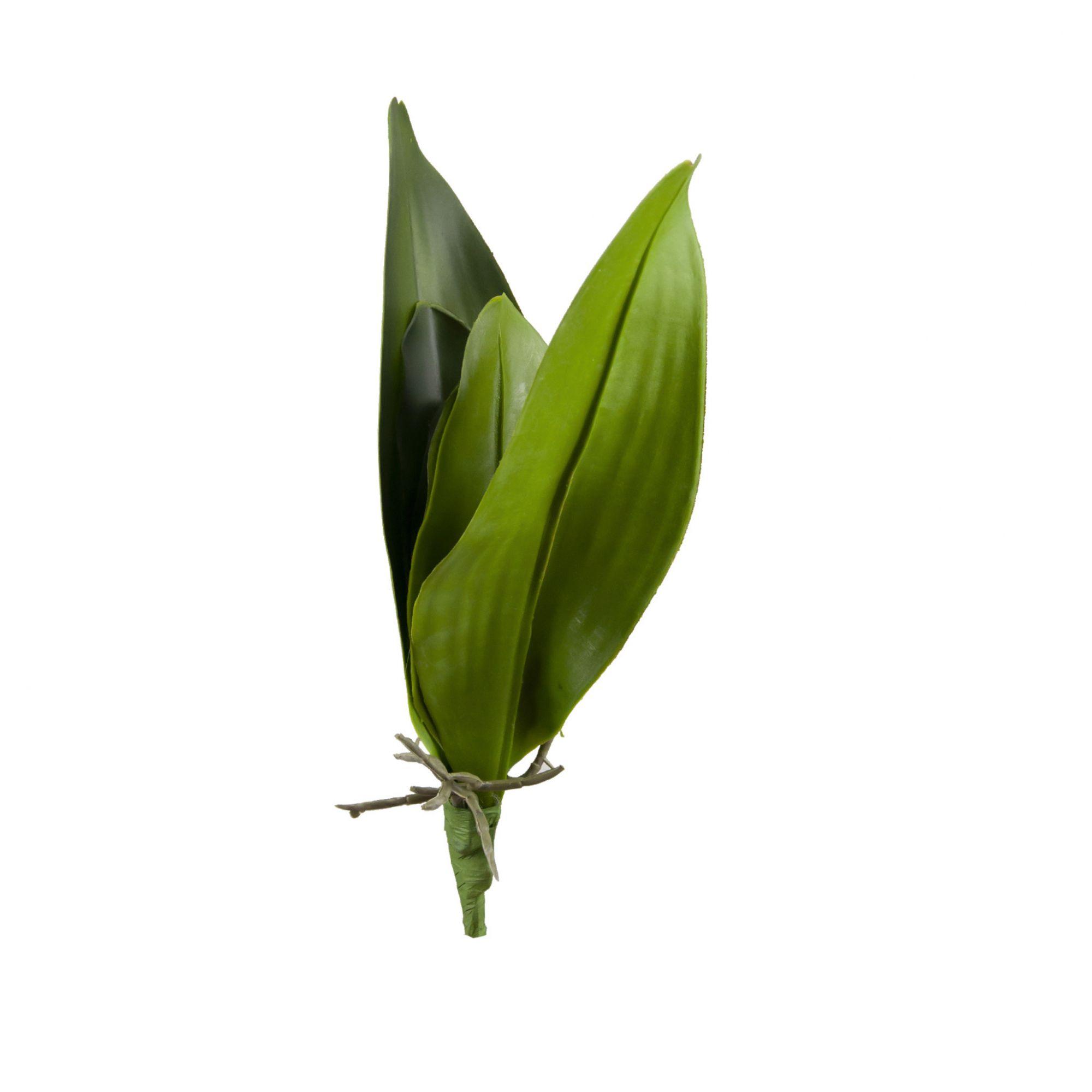 Folha de Orquídea 32 cm
