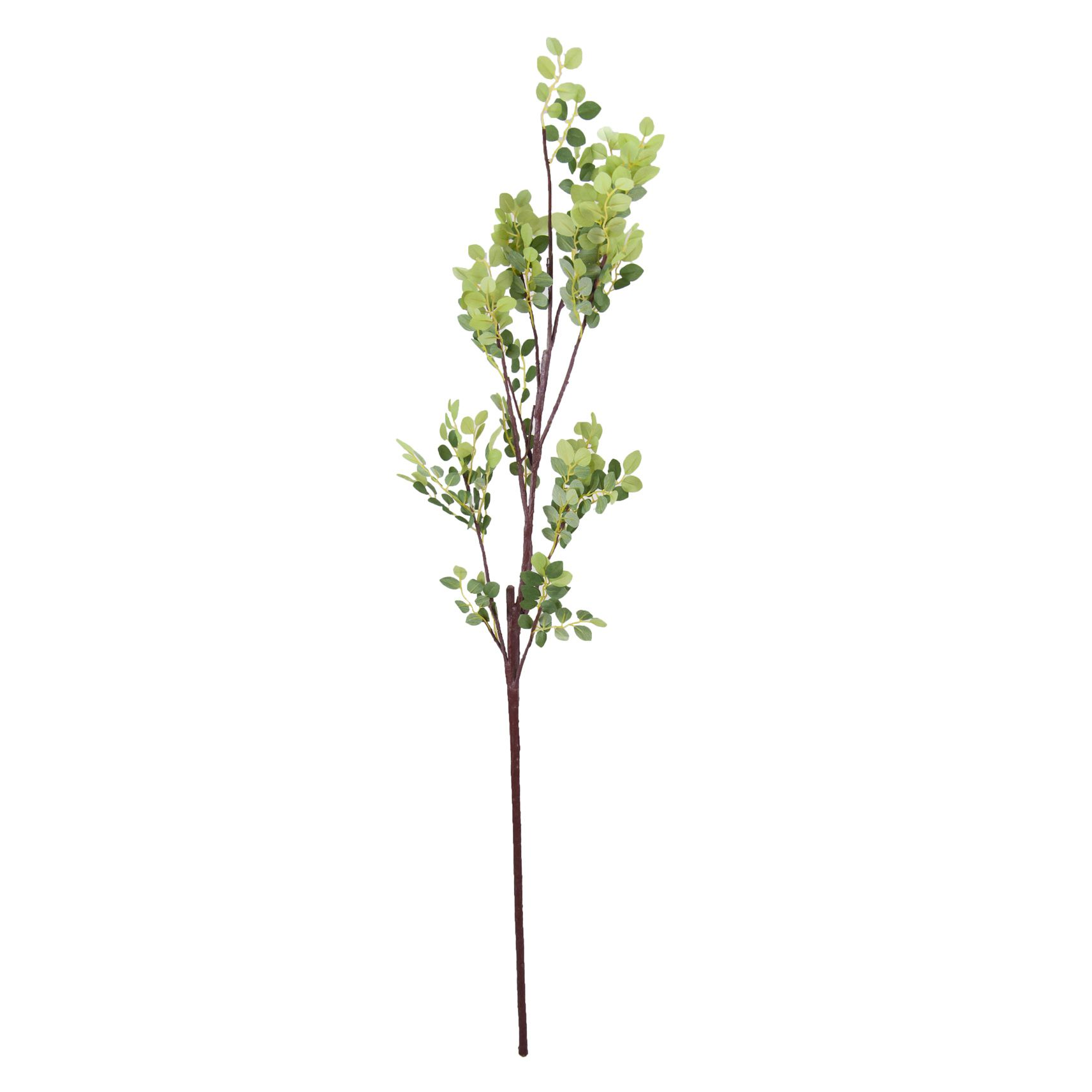 Folha Haste 100 cm