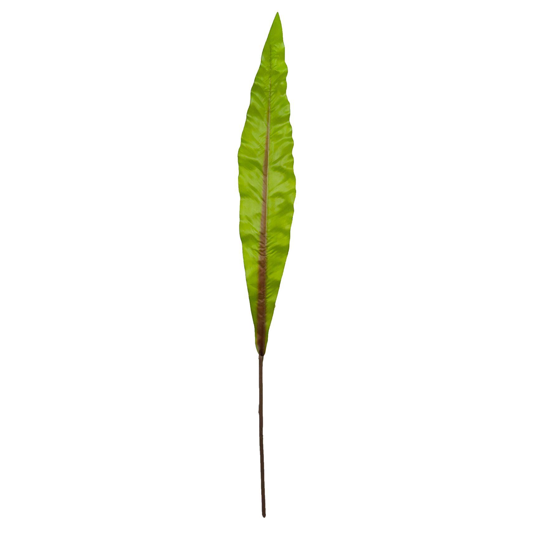 Folha Rica 98 cm