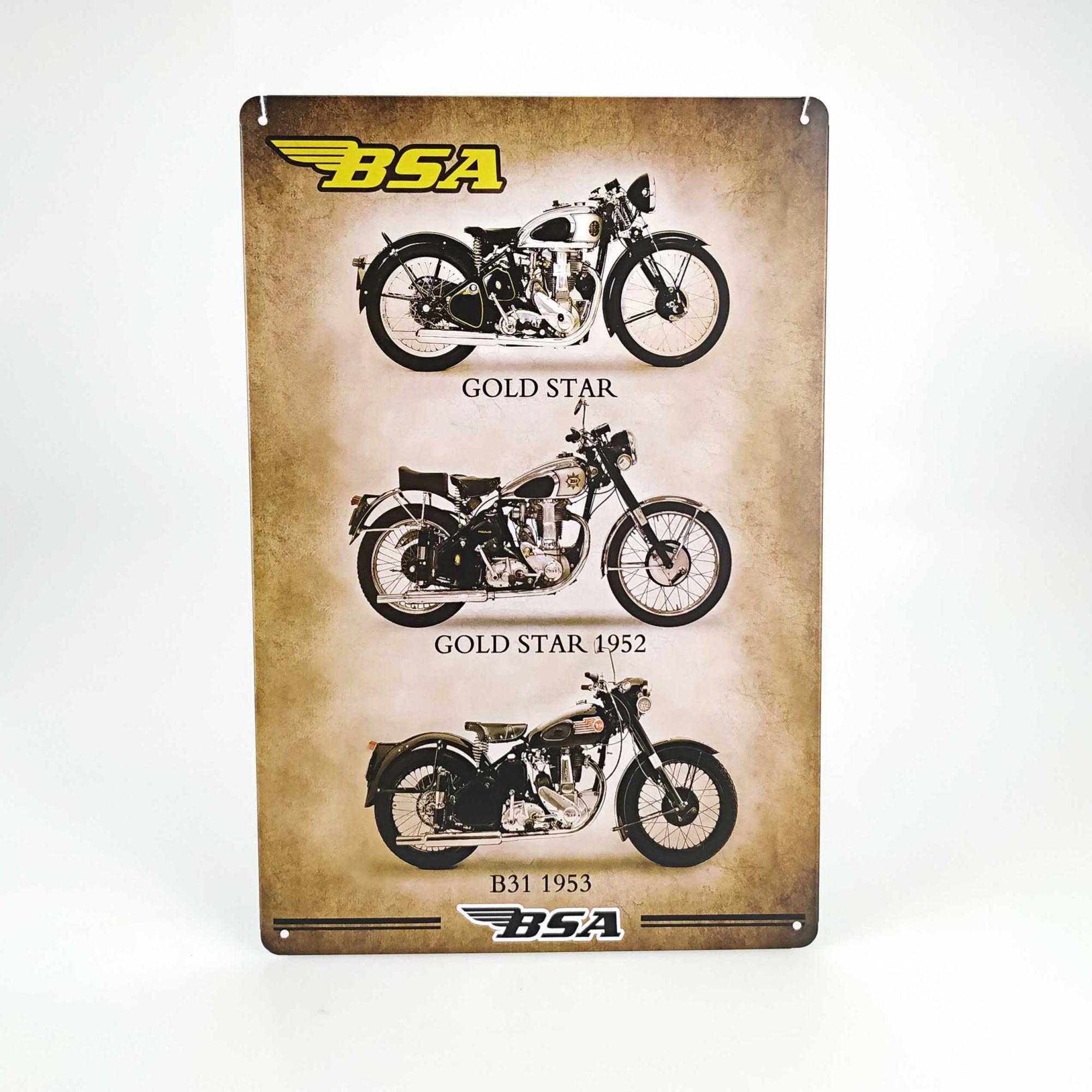 Placa 20 x 30 Motos 3218