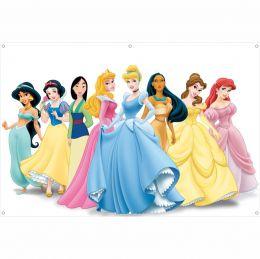 Painel de Festa Lona Princesas