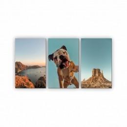 Quadro Decorativo Mosaico Quarto Sala Bulldog 3 peças - 126x65cm