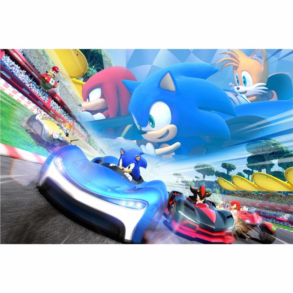 Painel em lona Sonic