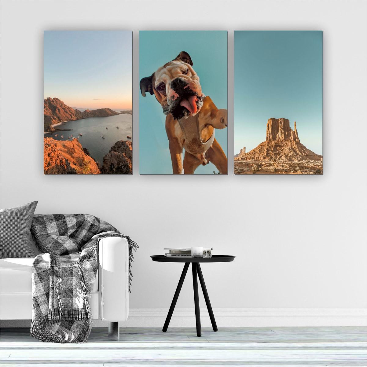 Quadros Decorativos Mosaico Quarto Sala Bulldog 3 peças - 126x65cm