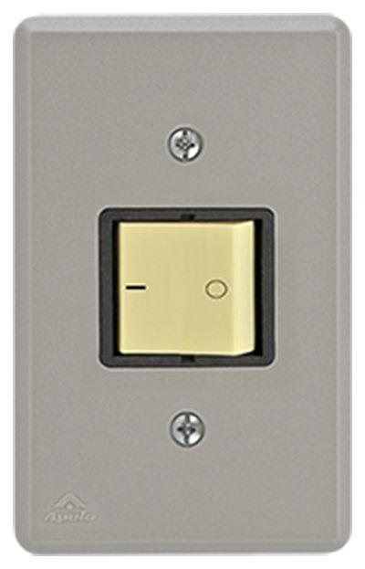 INTERRUPTOR BIPOLAR SIMPLES 10A 250V C/ PLACA SILENLUX (10 UNIDADES)