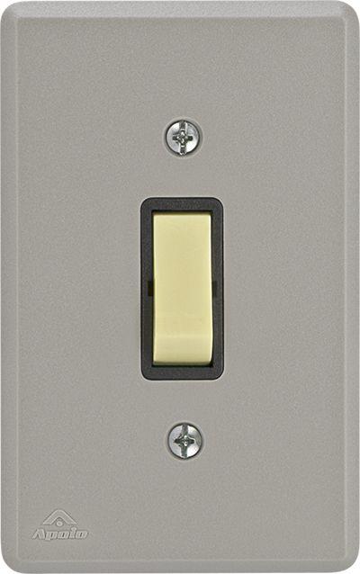 INTERRUPTOR SIMPLES 10A 250V C/ PLACA SILENLUX (40 UNIDADES)