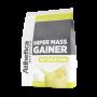 HIPER MASS GAINER W/ CREATINE 3KG ABACAXI COM COCO