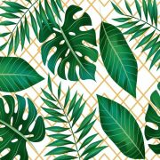 Papel de Parede Tropical CO-07 - Cole Aí