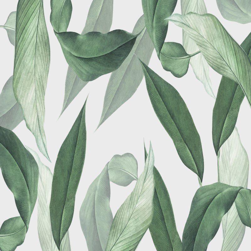 Papel de Parede Tropical CO-03 - Cole Aí