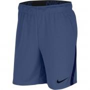 Bermuda Nike Dry 5.0 Masculino