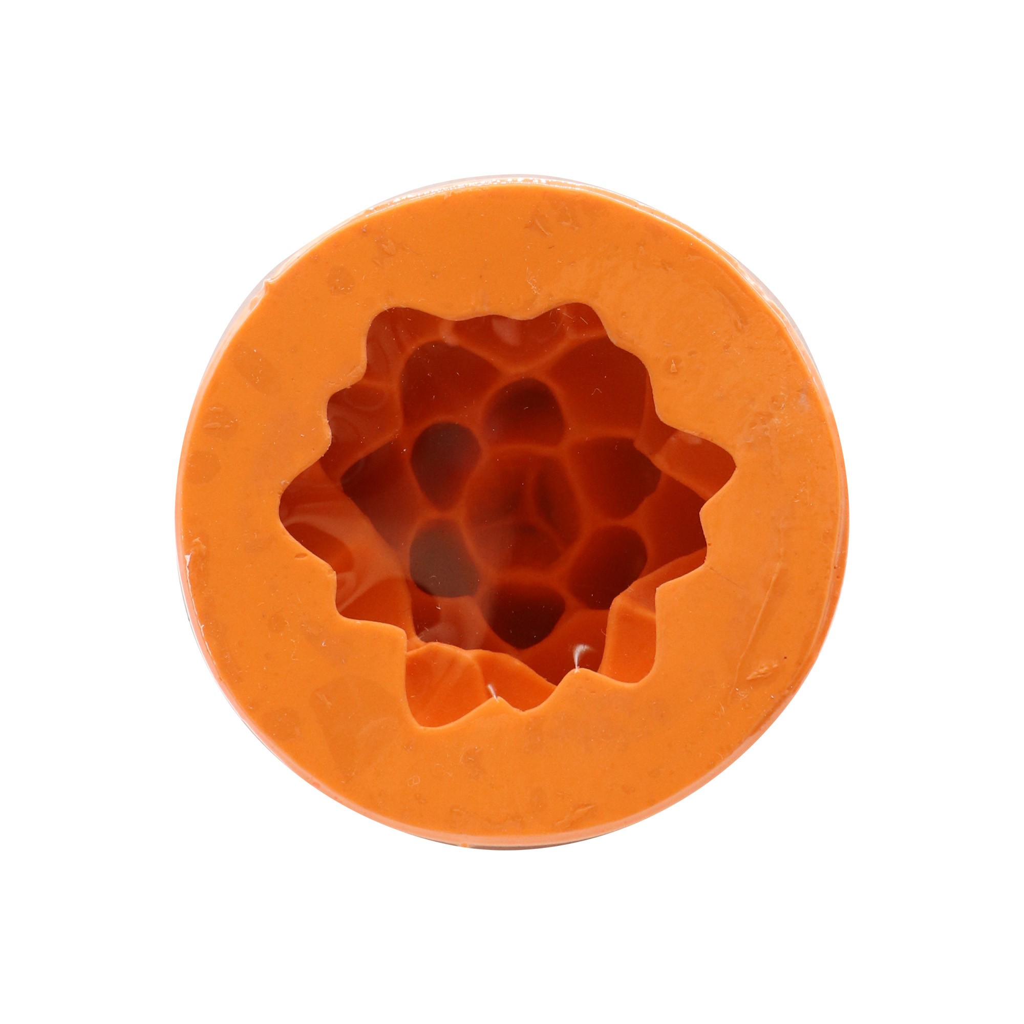 Molde de silicone suculenta M