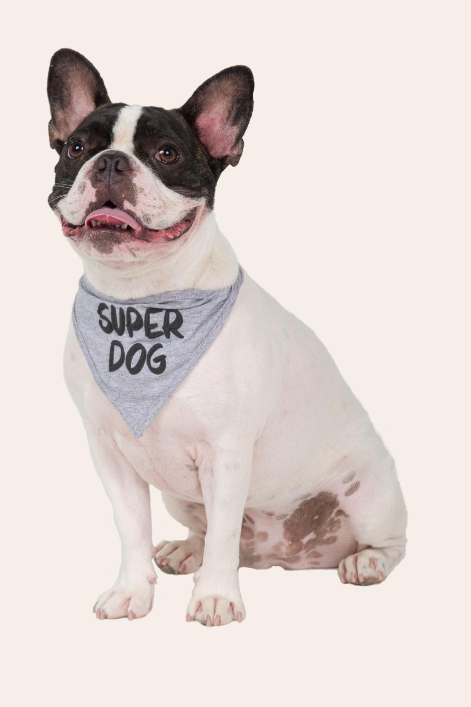 014/U - Bandana Pet  Super Dog