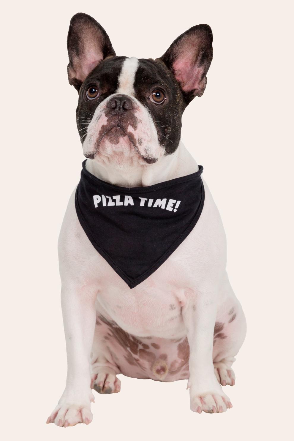 041/H - Bandana Pet Pizza Time - Família