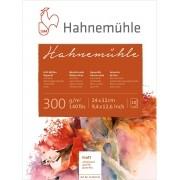 Bloco Aquarela Hahnemuhle 300 g/m² textura fina 24 x 32 cm com 10 fls. Hahnemuhle