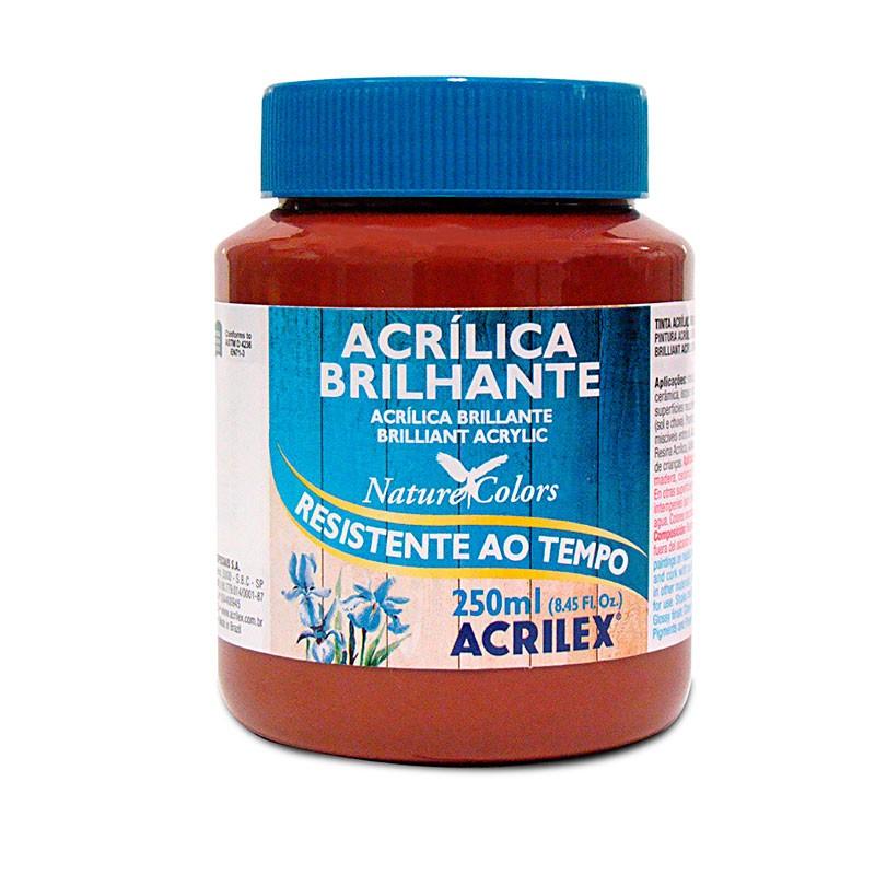Tinta Acrílica Brilhante Acrilex 250ml