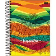 Caderno Universitário Tropicália 15 Matérias c/300fls.