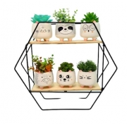 Vaso Decorativo gatinho c/suculenta- Dubai