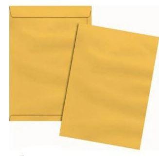 Envelope Ouro 22cmx32cm c/ 10 Envelopes - Via Brasil
